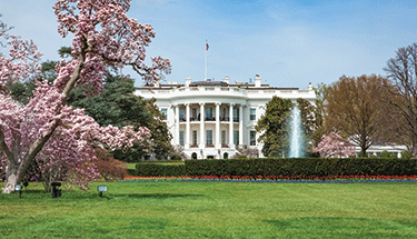 White house with green grass and trees