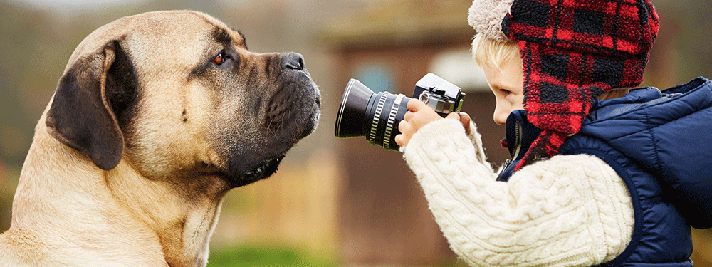 Boy photographing dog