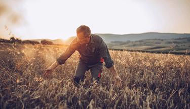 Man in crop field Featured